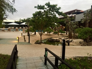 The main area of Finch Bay Eco Hotel