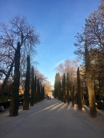 Madrid calle del arboles