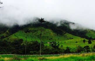 Salento Hills